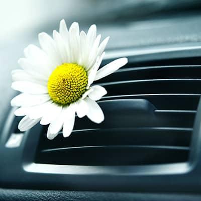 igienizzazione auto e ricarica clima