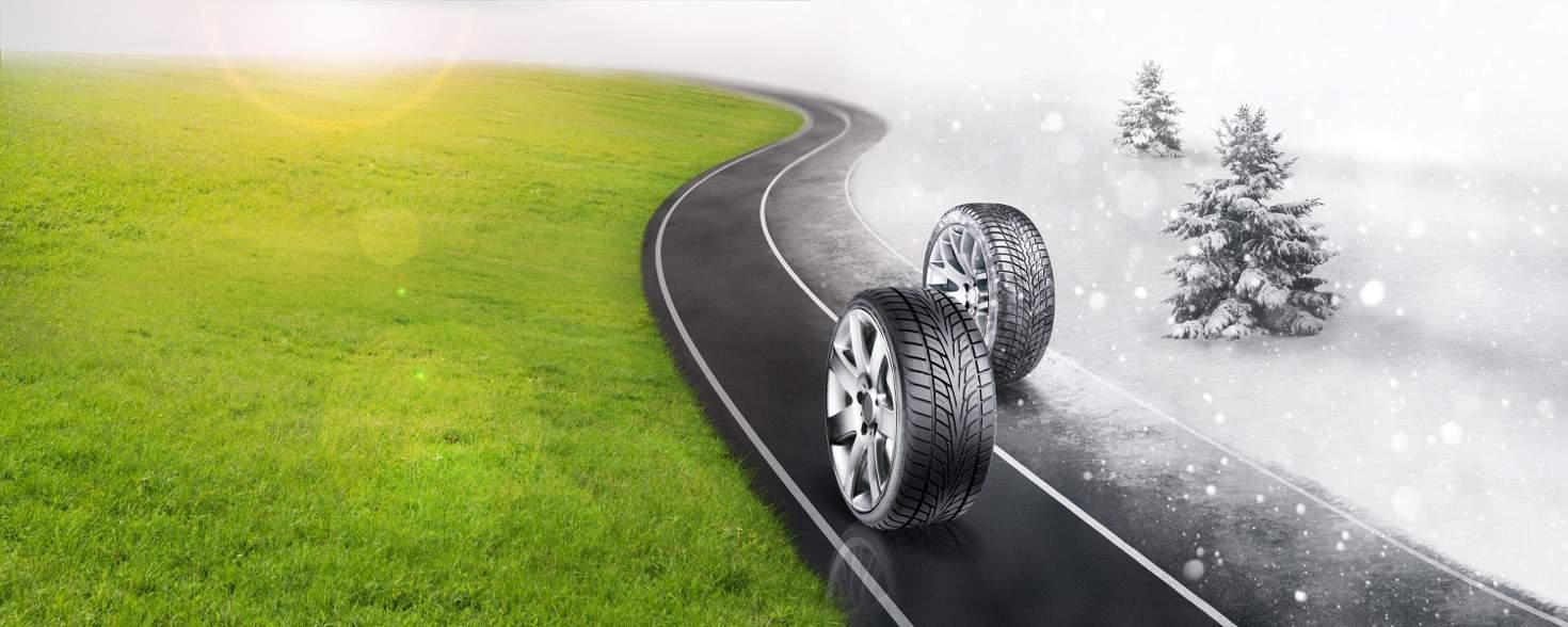 L'articolo 6 del Codice della Strada obbliga all'utilizzo degli pneumatici invernali o catene a bordo dal 15 novembre al 15 aprile.