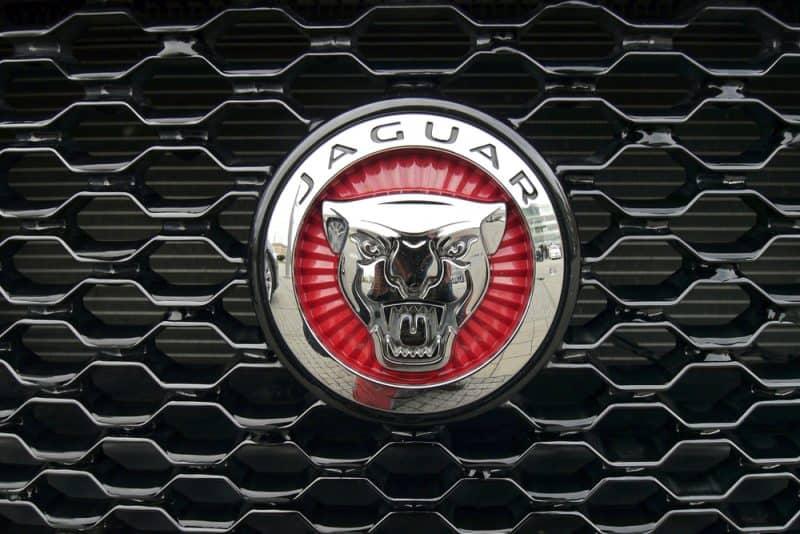 oroscopo bologna gomme scorpione simbolo jaguar