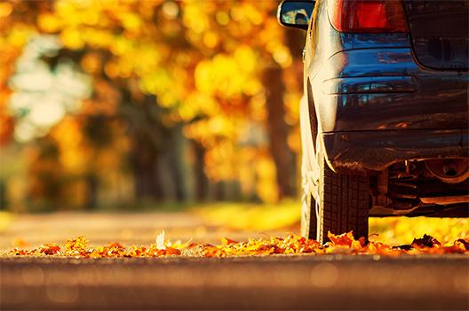 auto in autunno