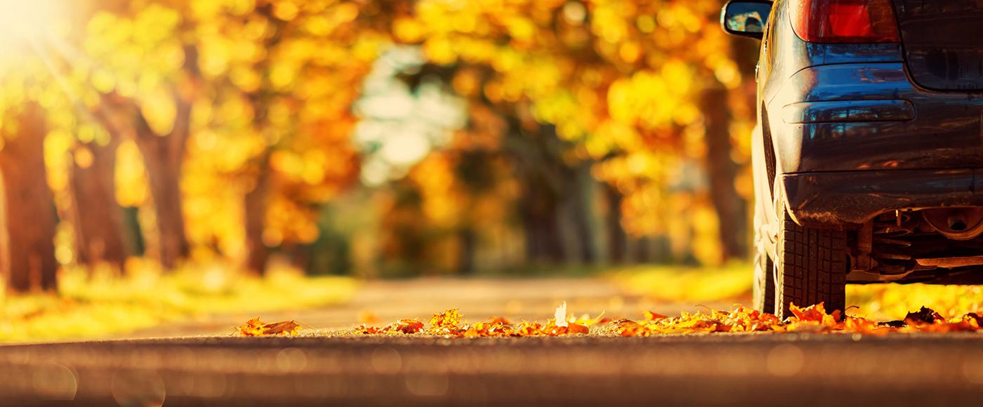 pneumatici auto in autunno